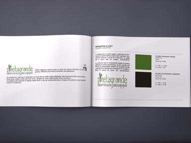 Brochure Design & Logo Making