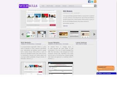 Website development and design with integration of SEO.