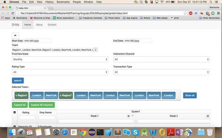 Customized Angular UI Grid | Freelancer