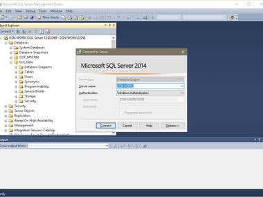 MSSQL Database Administrator