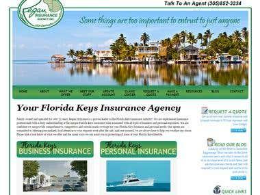 WordPress Insurance Company Site