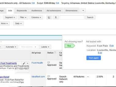Google Adwords: Local Targeted Ads Setting