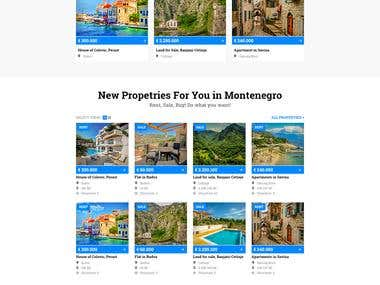 Montenegro Genesis   Website design & development