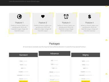 One Pager Paypal Payment Integrated