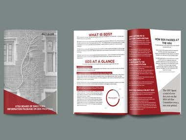 Report-Style Brochure
