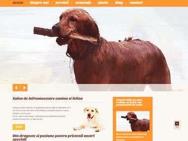 www.chicdog.ro