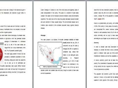 Technical Research essay