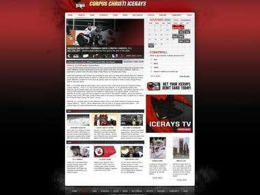 Icerays Website - College Hockey