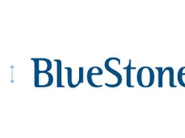 12.BlueStone.com - Content/SEO/SMO/PPC Marketing