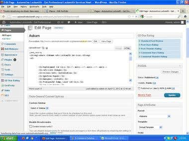 Wordpress Data Entry