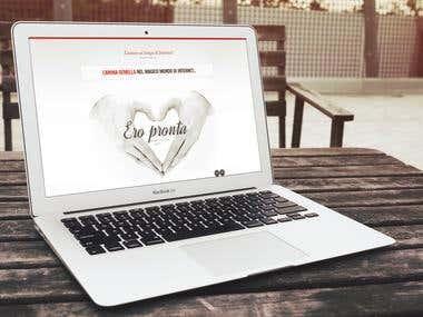 2013 - eBook Website