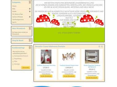 Magento Shop inkl. responsive Design