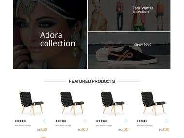 eCommerce Websites (DNN / Wordpress)