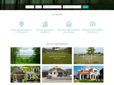Website created for real estate site