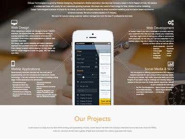 web services company website development