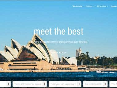 Build Site and custom feature with Kleo Theme and buddypress