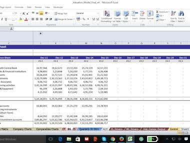 DCF Valuation of a medium sized company