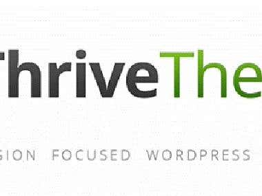 Thrive Theme Review [Article Snippet]