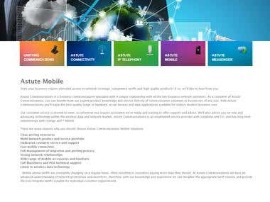 Telecommunication company website