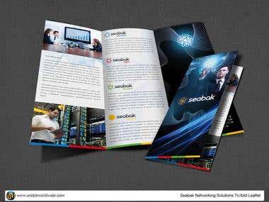 Computer network tri-fold brochure