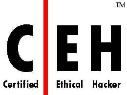 A Certified Ethical Hacker