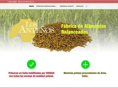 Balanced feed factory and shop branding and website