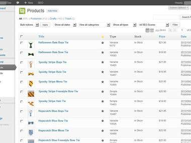 Uploading Products for an Ecommerce Business Using WordPress