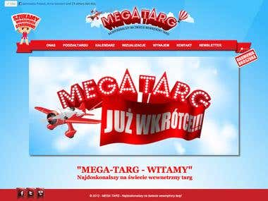 MegaTarg Website
