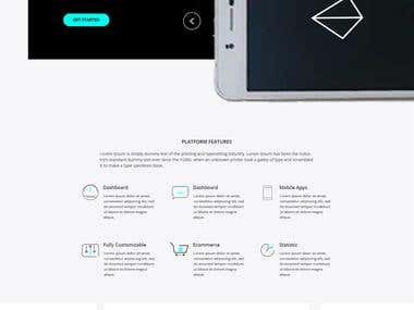eCommerce Landing Page for PSD