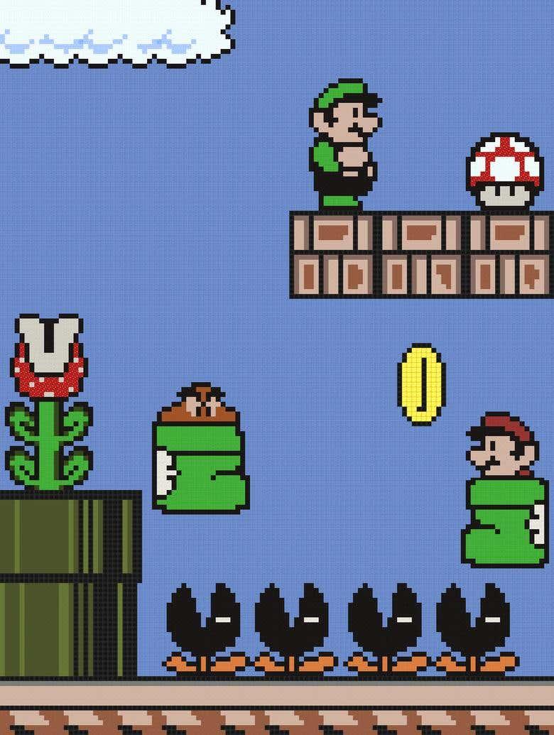 Minecraft Mario Freelancer
