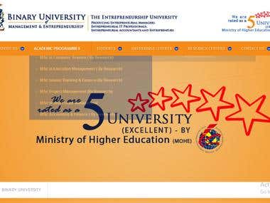 Binary University Website