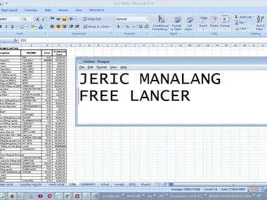 Sample Excel Works