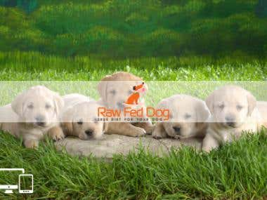 Raw Fed Dog