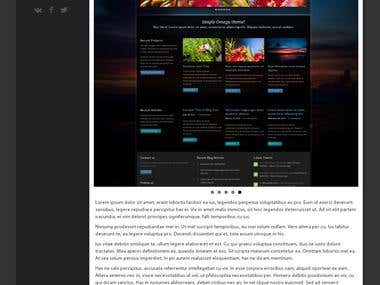 Responsive websites, wordpress
