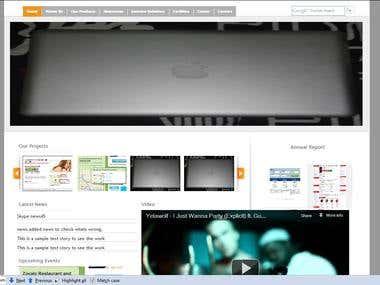 A companys profile website
