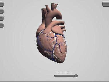 Anatomy prototype App