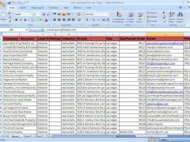 Lead Generation, Data Collecting and Data Analysis