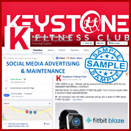 Social Media Advertising & Maintenance