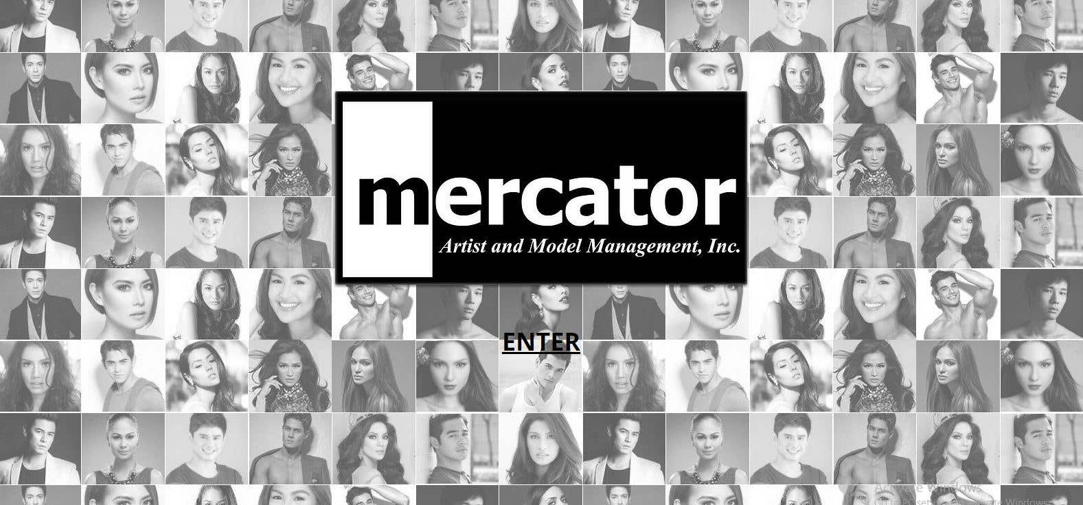 Mercator Website