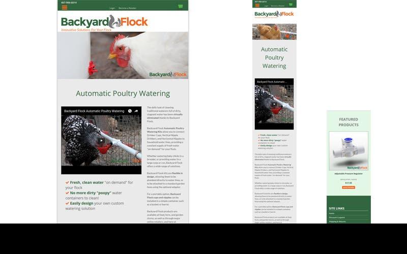 Backyard Flock.com
