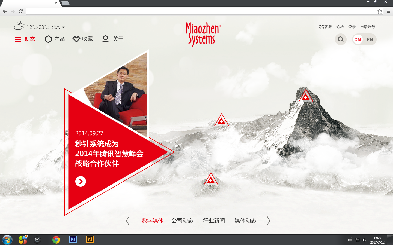 multiple website design