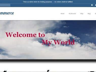 My eCommerce Site
