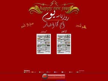 Newspaper website