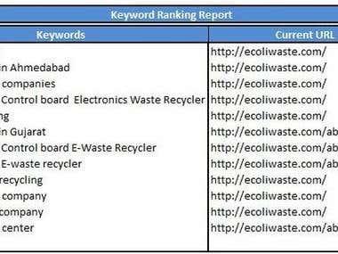 SEO Ranking Portfolio