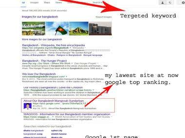 SEO - My lawest site at now Google top ranking