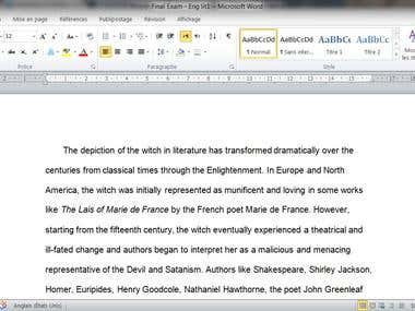 Literary essay writing for a student