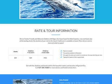 Dolphin watching website