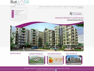 Blue Lotus Group Website