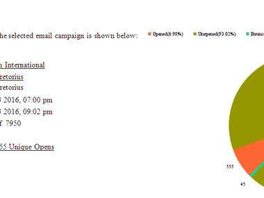 Email Marketing Campaign Stats