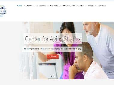 Wordpress e-Learning website